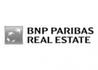 BNP 150x200